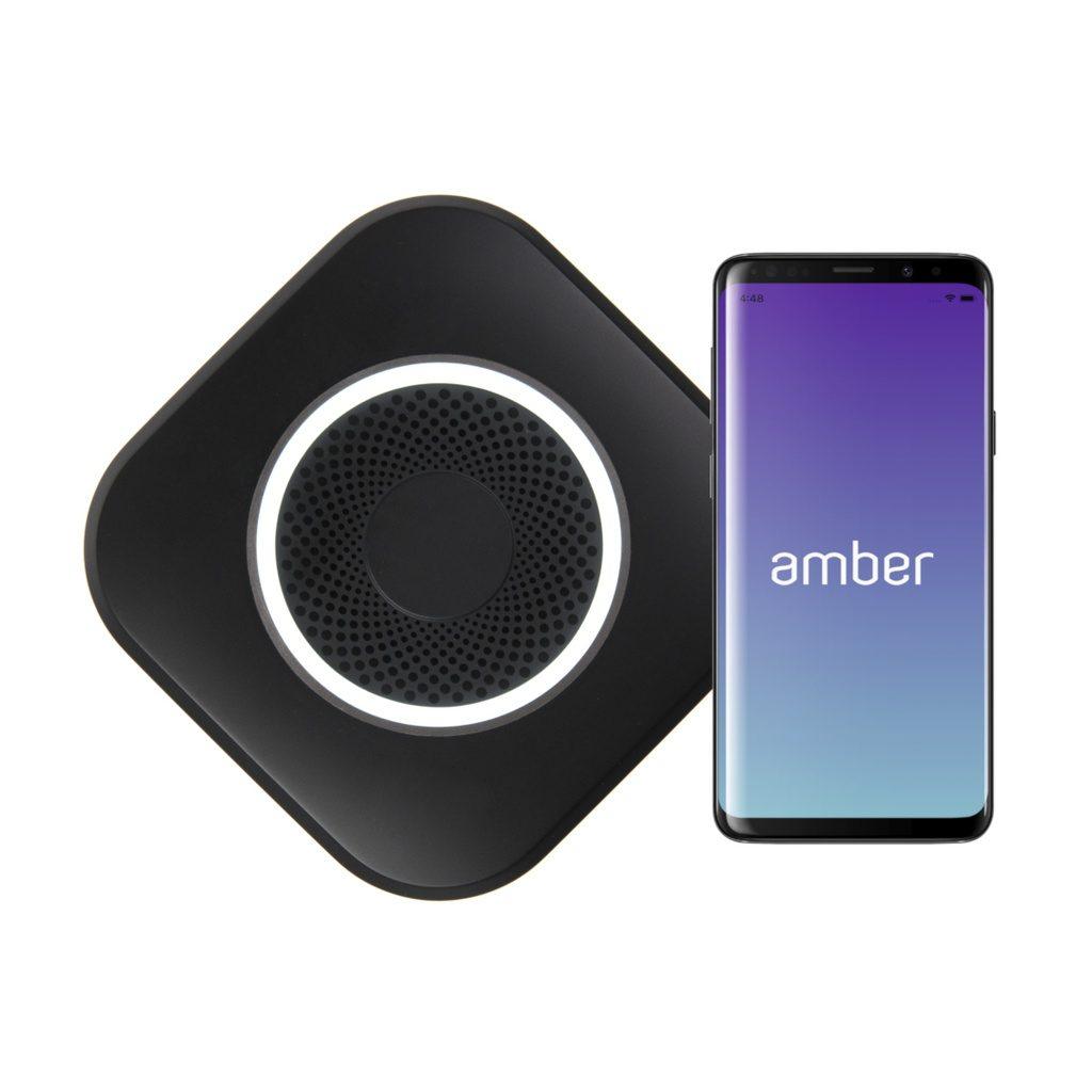 Amber Plus (2TB*2)